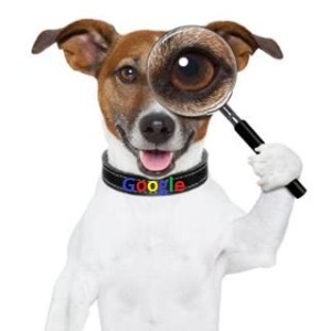 dog_with_magnifying_glass_445374