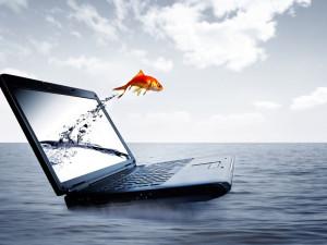 Ноутбук, рыбка